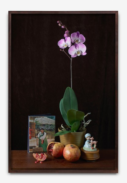 http://tommycha.com/files/gimgs/16_orchid-framed---mock.jpg